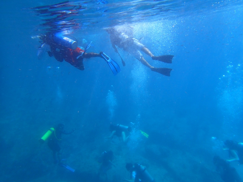 Two divers snorkelling above a large crowd of divers